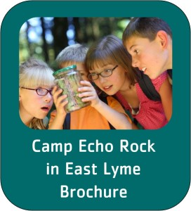 camp ech rock button